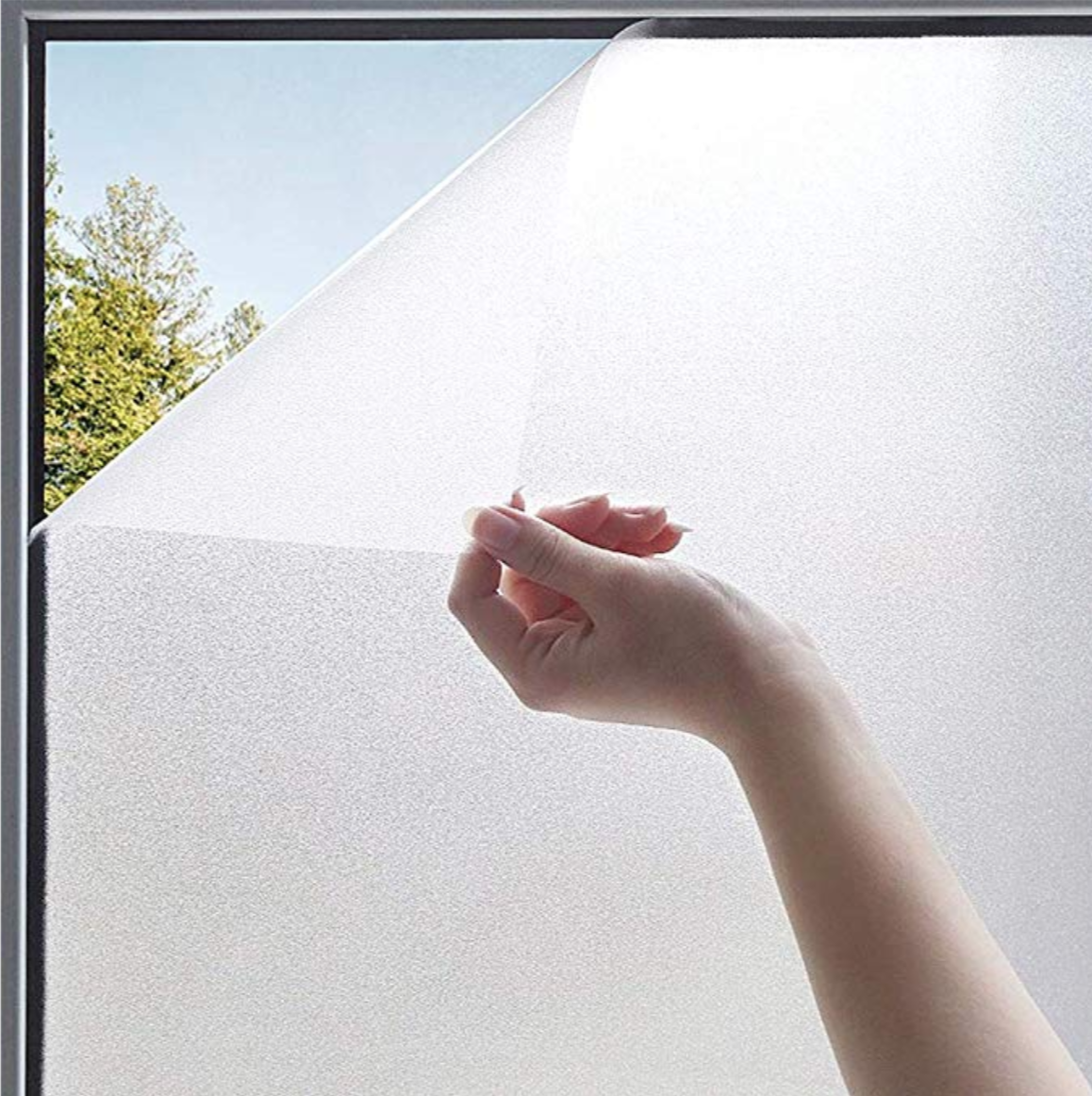 Film protecteur fenêtre